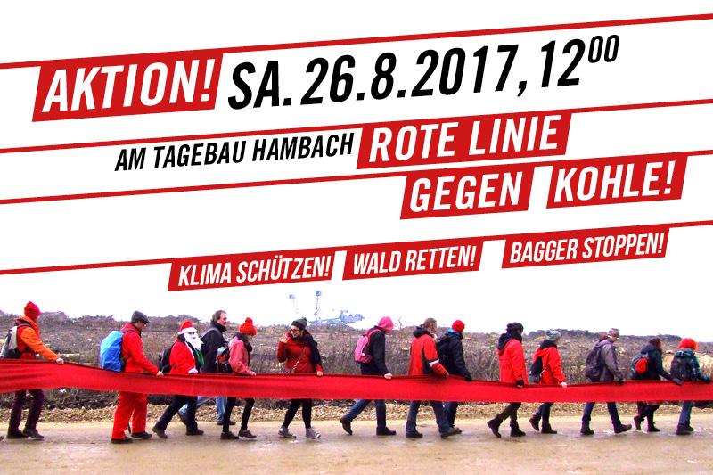 HambacherWald_800x533