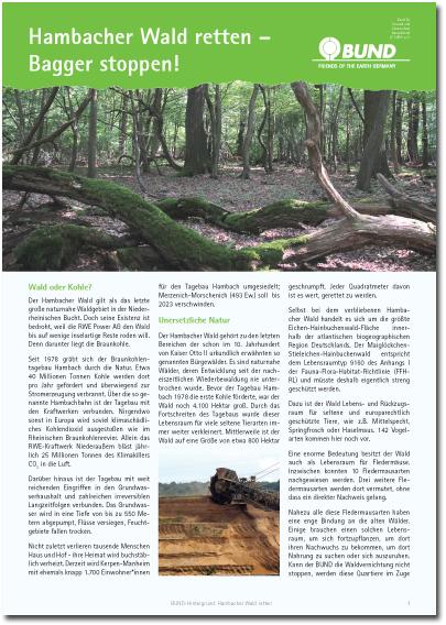 2017_07_31 BUNDhintergrund Hambacher Wald